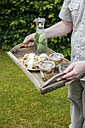 Person carrying tray with vegetarian snacks for picnic - EVGF03098