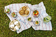 Picnic with vegetarian snacks on meadow - EVGF03104