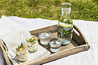 Tray with curd desserts and flavored mint water on picnic blanket - EVGF03116