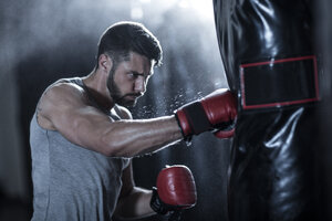 Boxer exercising with punch bag - ZEF11062