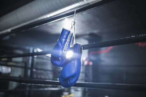 Boxing gloves hanging in boxing ring - ZEF11071