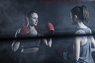 Two female boxers in ring in boxing gym - ZEF11077
