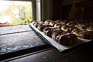 Sweden, cinnamon rolls in a bakery - ABZF01440