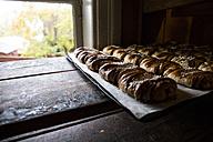 Sweden, cinnamon rolls in a bakery - ABZF01440