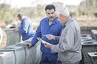 Two men talking at industrial pot factory - ZEF11347