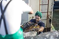Fishermen working on trawler - ZEF11392