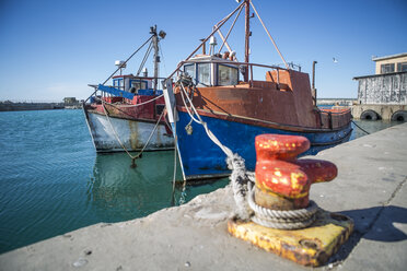 South Africa, Cape Town, Moored trawler in fishing harbour - ZEF11401