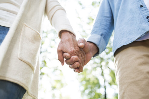 Senior couple holding hands in nature, partial view - HAPF01054