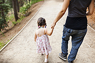 Back view of mother and little daughter walking hand in hand on forest track - VABF00834