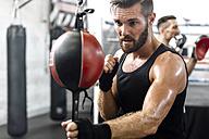 Boxer exercising at punchingball - MADF01236