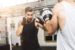 Boxer sparring with coach - MADF01239
