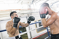 Two boxers fighting in boxing ring - MADF01248