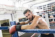 Boxer resting in boxing ring - MADF01251