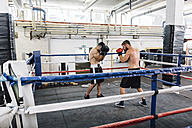 Two boxers fighting in boxing ring - MADF01275