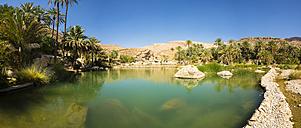 Oman, Sharqiyah, Wadi Bani Khalid - AMF05062