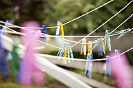 Clothes line with pegs in garden - MFRF00743