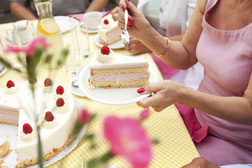 Hands putting cream cake on plates - MFRF00776