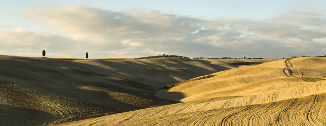 Italy, Tuscany, Val d'Orcia, rolling landscape - FCF01137