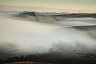 Italy, Tuscany, Val d'Orcia, rolling landscape in fog - FCF01140