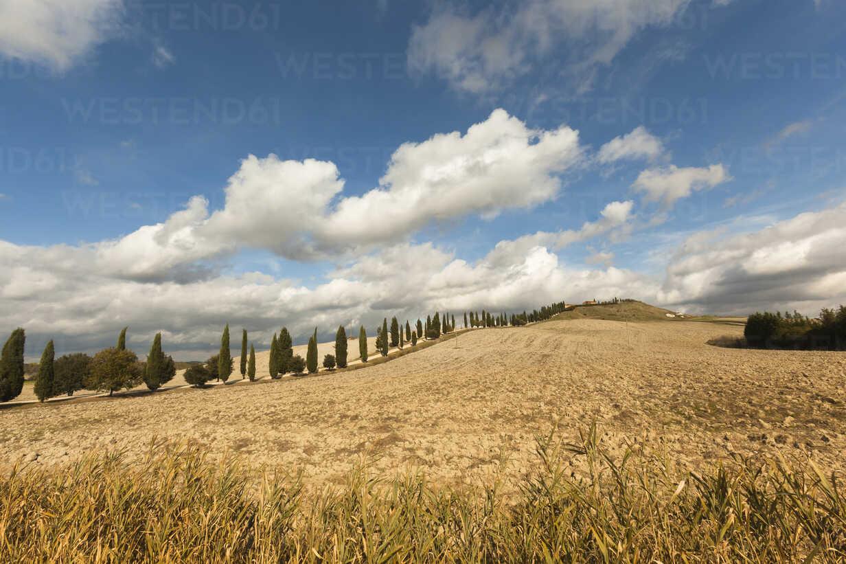 Italy, Tuscany, Val d'Orcia, rolling landscape - FCF01152 - Christina Falkenberg/Westend61