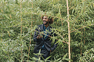 Young businessman with smart phone standing between bushes - JOSF00428
