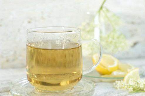 Glass of elder flower tea, elderflowers and lemon slices in the background - ASF06056