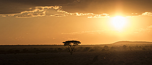 Namibia, Kunene Region, sunset - MPAF00094