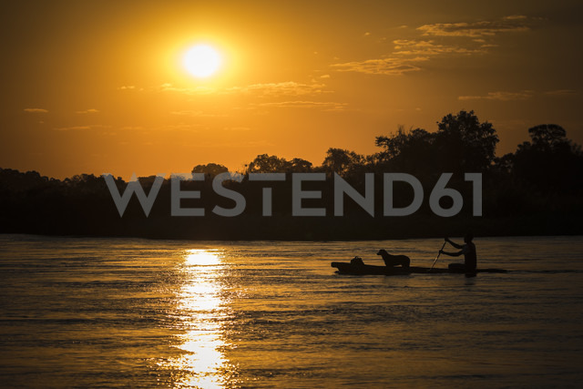 Namibia, man and dog crossing Okavango River with Mokoro at sunset - MPAF00097