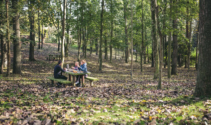 Family having picnic in the woods - DAPF00493