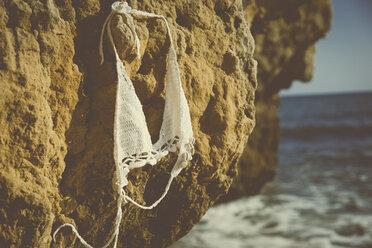 Bikini top hanging on a rock on the beach - CHPF00347