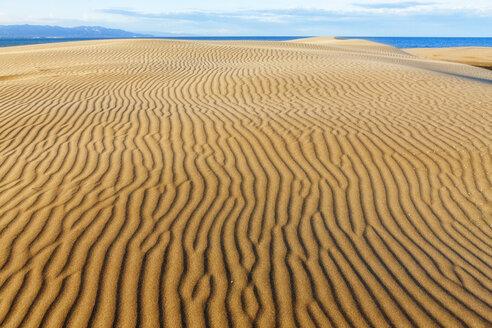 Spain, Tarragona, Ebro Delta, dune - DSGF01172