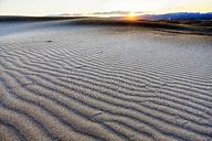 Spain, Tarragona, Ebro Delta, dune at sunset - DSGF01175