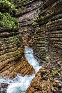 Austria, Tennegau, Taugl river - YRF00143