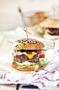 Homemade Cheeseburger - SBDF03085