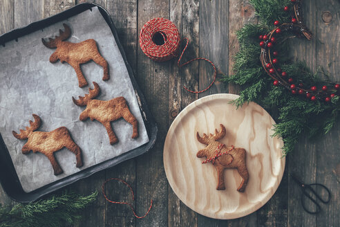 Elk-shaped Christmas cookies - RTBF00548