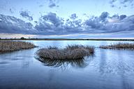Spain, Laguna de la Nava - DSGF01190