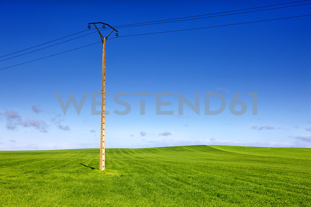 Spain, Province of Zamora, wheat field and power line - DSGF01205