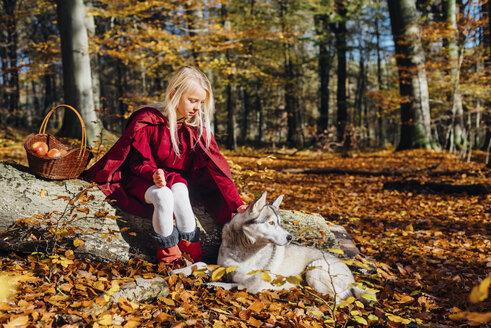 Red Riding Hood, Girl sitting on tree trunk in forest petting husky - MJF02085
