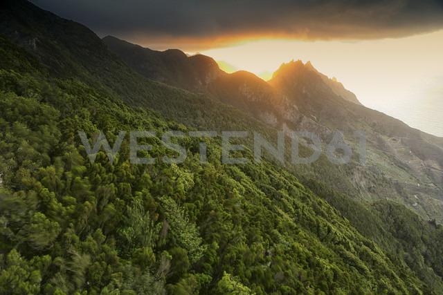 Spain, Tenerife, Taganana in the Anaga mountains - DSGF01309 - David Santiago Garcia/Westend61