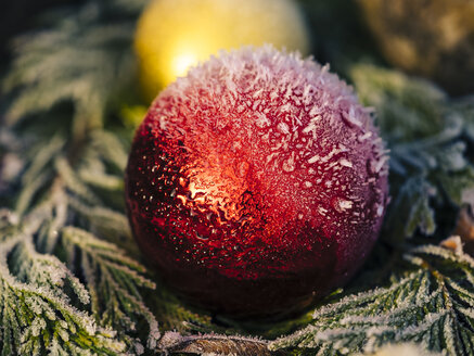Red christmas bauble with snow - KRPF02078