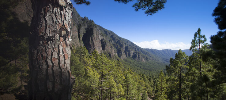 Spain, Canary Islands, La Palma, Caldera de Taburiente National Park - DSGF01374