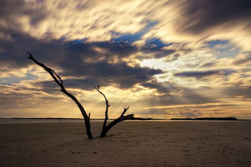 USA, South Carolina, sunset at Folly Beach - SMAF00653