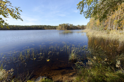 Finland, North Karelia, Kuhmo, lake in the Taiga - ZCF00455