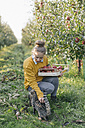 Young woman with crate and cat in apple orchard - KNSF00719
