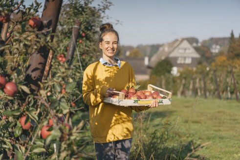 Young woman holding crate with apples in orchard - KNSF00725