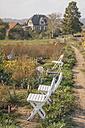 Cottage garden - KNSF00761
