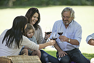 Happy extended family having a picnic and toasting red wine glasses - ZEF12323