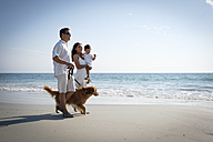 Family walking on the beach with dog - ABAF02131