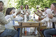 Happy friends and family having lunch in garden with red wine - ZEF12369