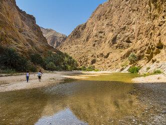 Oman, Wadi Tiwi - AMF05186